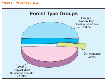 Forest Type Groups